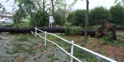 自然災害・沿岸域