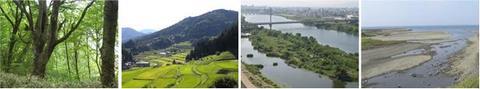 生物多様性センター第5回談話会「気候変動でどう変わる?大阪の森・里・川・海の生物多様性」を開催します!