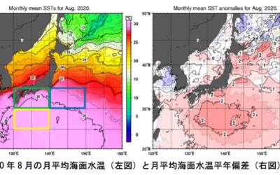 気象庁より「気候変動監視レポート2020」が公表されています。